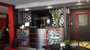 Cai Ying